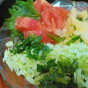 鹿児島産オレンジと夏野菜のサラダ