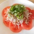 簡単!大葉香る、さっぱりトマトのしらす大葉のせ
