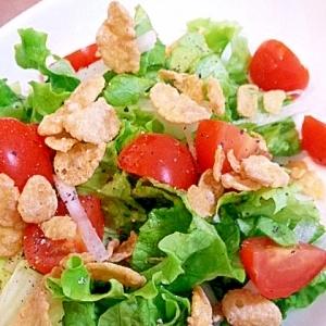 赤と緑の元気野菜サラダ