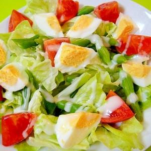 インゲンと卵のグリーンサラダ
