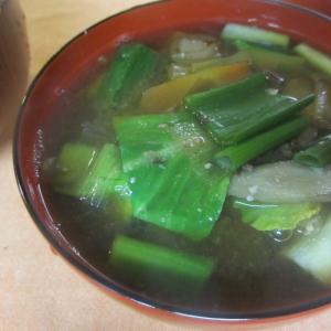 お味噌汁~にんじん、ごぼう、小松菜、葉玉ねぎ~