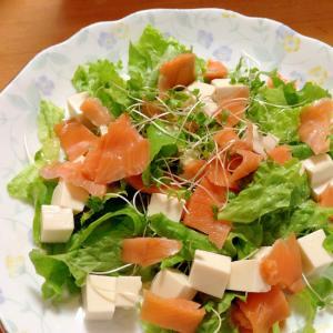 豆腐&サーモンサラダ