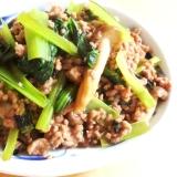 【夫婦のおつまみ】小松菜とミンチのオイスター炒め