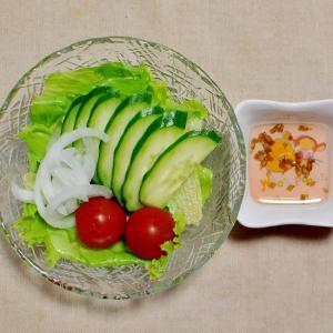 きゅうり&新玉ねぎ&トマト&レタスのサラダ