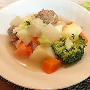 牛すね肉と野菜具沢山ポトフ