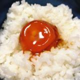 醤油卵黄卵かけご飯