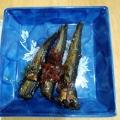 ネギも美味しい♬ イワシの甘露煮