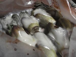 タラの芽チーズ焼き