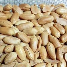 ピーナッツ燻製