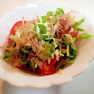 トマトと豆苗の和風サラダ