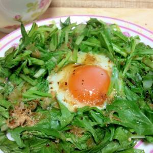 朝食に簡単♡水菜エッグ