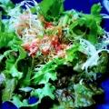 かりかりエビの生野菜