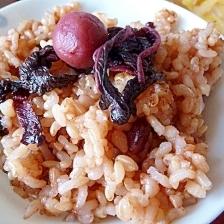 活力鍋で玄米酵素ご飯
