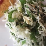 青じそキャベツ磯サラダ