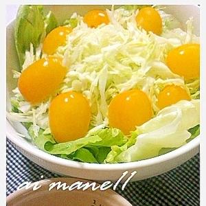 野菜サラダわさびドレッシングかけ