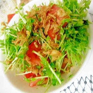 豆苗とトマトとフライドオニオンのサラダ