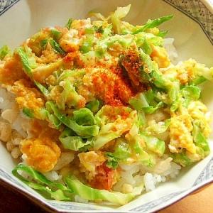 簡単❤明太たまご&春キャベツ外葉で丼♪(天かす)