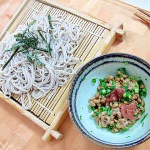 納豆つけ麺そば