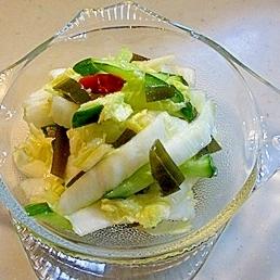 即席白菜とキュウリの甘酢漬け