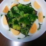 彩り貝割れとブロッコリーサラダ♪