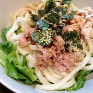 野菜が美味しい~サラダうどんのタレ