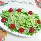 水菜と胡瓜の春雨入りサラダ