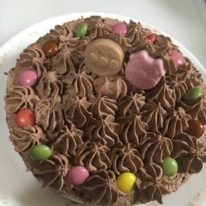 市販のスポンジで☆アンパンマンのチョコづくしケーキ